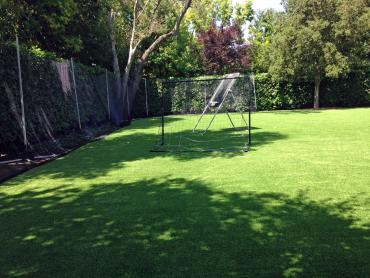 Artificial Grass Photos: Artificial Grass Carpet Brent, Oklahoma Backyard Sports, Backyard Landscaping