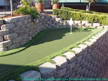 Artificial Grass Photos: Artificial Grass Carpet Edmond, Oklahoma Putting Green, Backyards