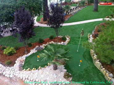 Artificial Lawn Oklahoma City, Oklahoma Best Indoor Putting Green, Backyard Makeover artificial grass