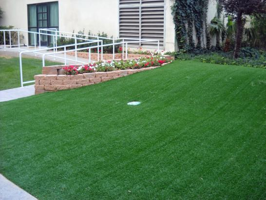 Artificial Grass Photos: Artificial Lawn Zena, Oklahoma Putting Green Grass, Small Front Yard Landscaping