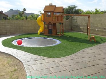 Artificial Grass Photos: Artificial Turf Ardmore, Oklahoma Kids Indoor Playground, Backyard Design