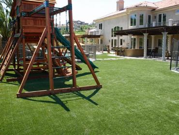 Artificial Grass Photos: Artificial Turf Cost Lindsay, Oklahoma Upper Playground, Backyard Makeover