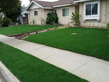 Artificial Grass Photos: Artificial Turf Cost Tribbey, Oklahoma Roof Top, Small Front Yard Landscaping