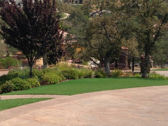 Artificial Grass Photos: Artificial Turf Installation Tahlequah, Oklahoma Landscape Ideas, Backyard Makeover