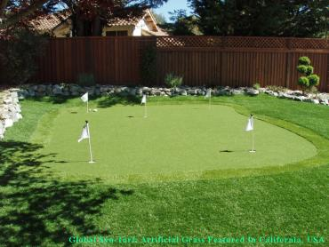 Artificial Grass Photos: Artificial Turf Stillwater, Oklahoma Backyard Deck Ideas, Backyard Landscape Ideas