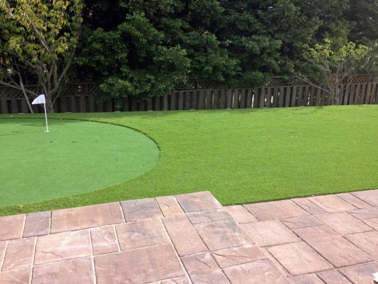 Artificial Grass Photos: Best Artificial Grass Pocasset, Oklahoma Diy Putting Green, Beautiful Backyards