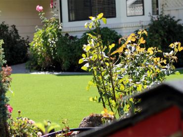 Artificial Grass Photos: Best Artificial Grass Wyandotte, Oklahoma Rooftop, Front Yard Design