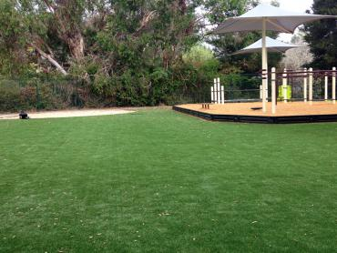 Artificial Grass Photos: Grass Installation Ramona, Oklahoma Athletic Playground