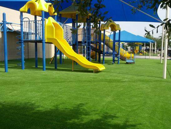 Artificial Grass Photos: Lawn Services Goltry, Oklahoma Lawns, Commercial Landscape