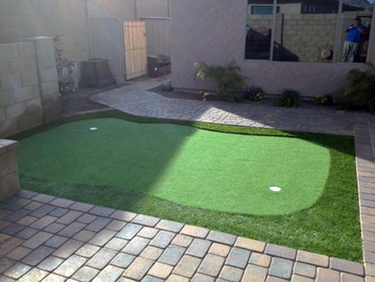 Artificial Grass Photos: Lawn Services Lucien, Oklahoma Office Putting Green, Backyard Landscaping Ideas