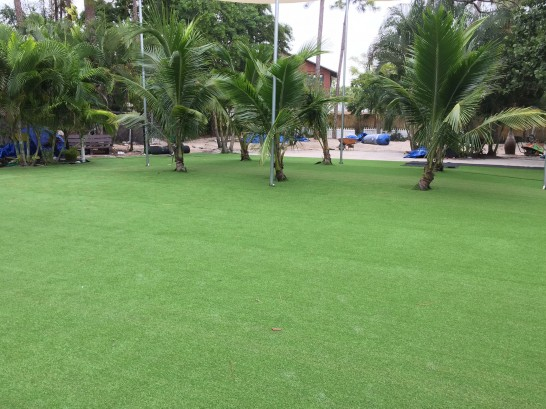 Artificial Grass Photos: Outdoor Carpet Nowata, Oklahoma Landscape Photos, Commercial Landscape