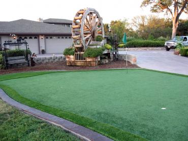 Artificial Grass Photos: Plastic Grass Arnett, Oklahoma Landscape Design, Front Yard Landscape Ideas