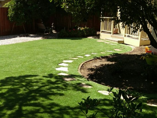 Plastic Grass Roland, Oklahoma Landscape Design, Backyard artificial grass