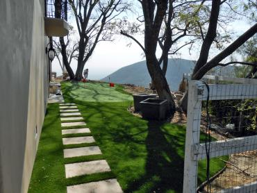 Artificial Grass Photos: Synthetic Grass Bennington, Oklahoma City Landscape, Backyard Designs