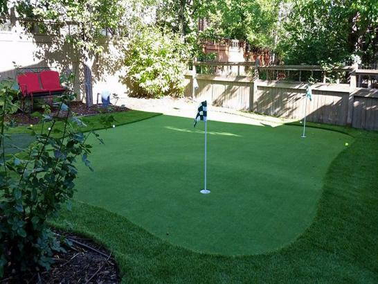 Artificial Grass Photos: Synthetic Grass Cooperton, Oklahoma Indoor Putting Green, Backyard Makeover