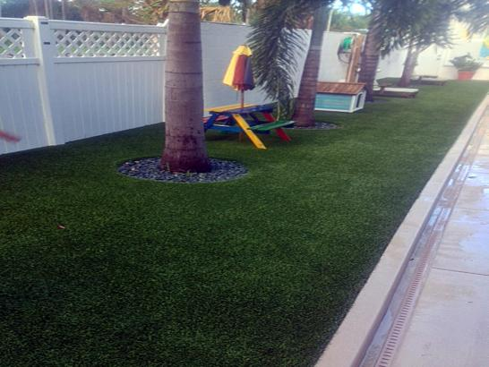 Artificial Grass Photos: Synthetic Grass Cost River Bottom, Oklahoma Backyard Deck Ideas, Backyard Landscaping