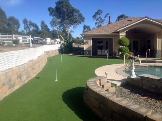 Artificial Grass Photos: Synthetic Turf Supplier Cimarron City, Oklahoma Home And Garden, Backyard