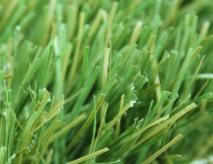 Synthetic Turf Grass